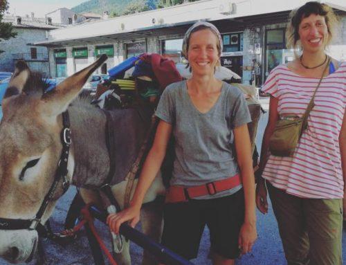 """Angela e Cristina a piedi lungo il Sentiero Francescano con l'asino Sigaro. """"Queste sono le nostre ferie"""""""