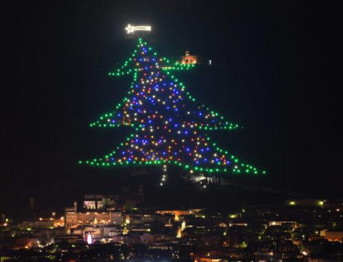 Venerdì 14 dicembre si spengono le luci dell'Albero per esprimere vicinanza alle vittime di Corinaldo