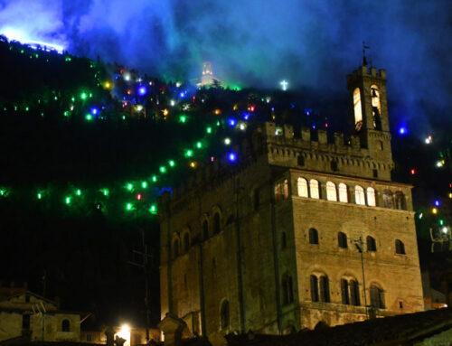 """L'Albero di Natale più grande del mondo sarà acceso dal Sindaco e dal Vescovo: """"E' un simbolo universale"""""""