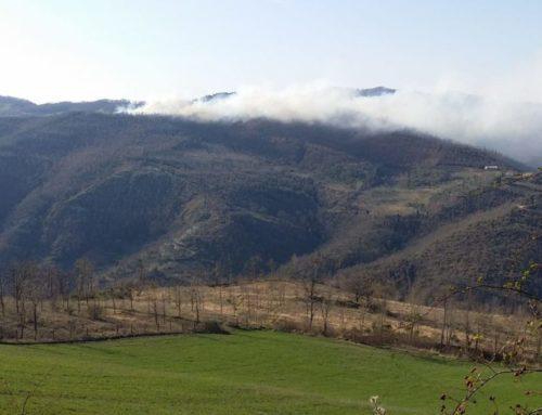 Incendio bosco a Sioli, indagini dei Carabinieri Forestale di Gubbio
