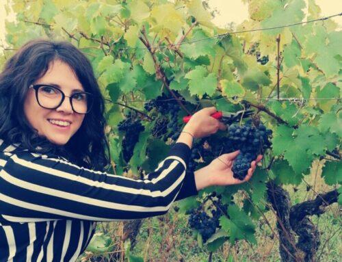 Valentina Pompei, il vino al femminile. Dal 2017 gestisce a Gubbio 6 ettari di vigneto di Castel d'Alfiolo